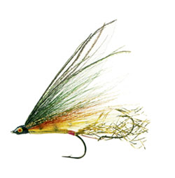 fishing fly !
